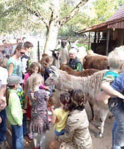 Deutscher Zootag