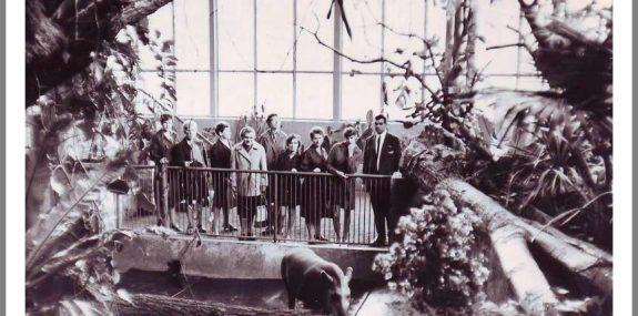 comp_017 Günter Zirnstein, Hoyerswerda, 1968, im Tropenhaus